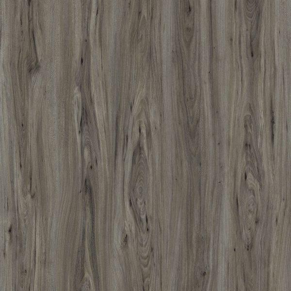 Roosevelt Oak